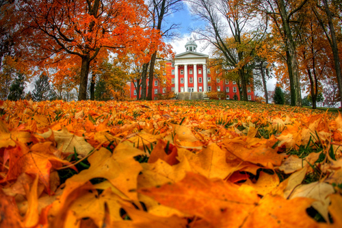college-photo_8354